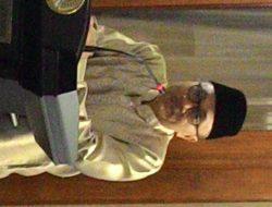 Buka Puasa Bersama Masyarakat Lampung di Jakarta, Ini Kata Ketua MPR RI