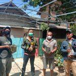 Menjadi Produk Unggulan Kampung Sirih, Keripik Sirih Pendongkrak Ekonomi Di Masa Pandemi