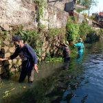 Sektor 22 Citarum Harum Sub 14, Bersihkan Sampah Dan Kirmir di Anak Sungai Cikapundung
