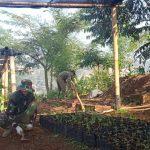 Sektor 22 Citarum Harum Sub 15, Oftimalkan Pemeliharaan Bibit Pohon