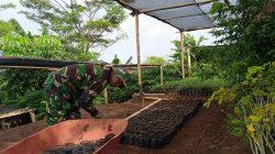 Sektor 22 Citarum Harum Sub 15, Rutin Lakukan Pemeliharaan Bibit Pohon Keras dan Produktif