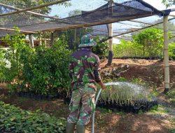 Sektor 22 Citarum Harum Sub 15 (Pembibitan) Rutin Melakukan Perawatan Bibit Pohon