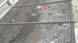 Bersama OPD, Sektor 22 Citarum Harum Sub 13, Bersihkan Anak Sungai Citeupus